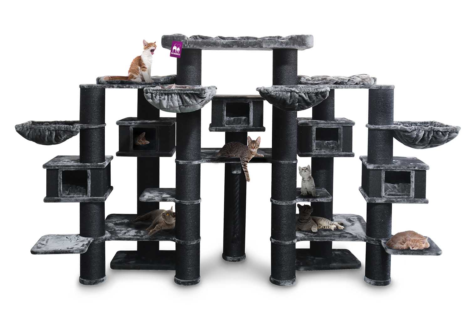 Cat tree Maine Coon 200 Pepper
