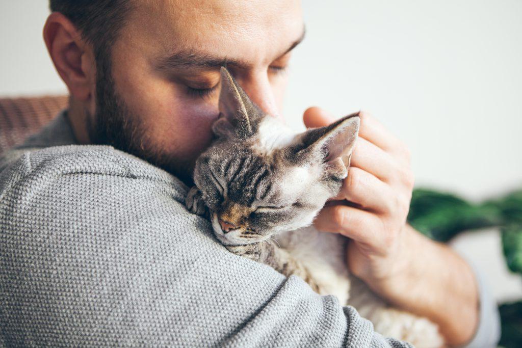 Kattenallergie: dit is het en zo los je het op