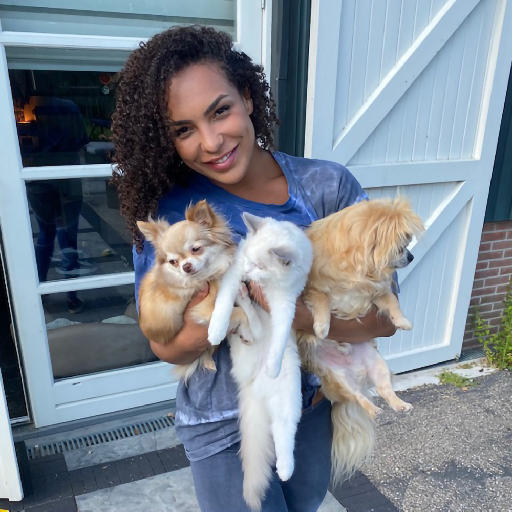 Cattalk | Mandy and her cats Miley, Lizzy and Bohdi